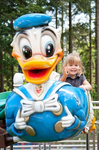 Disney-molen